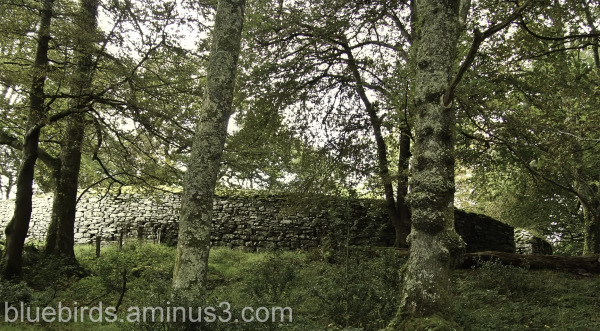 Clogher Fort - A 'fairy fort'
