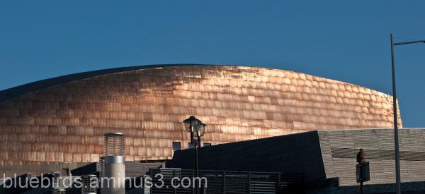 Millenium Centre - Cardiff Bay