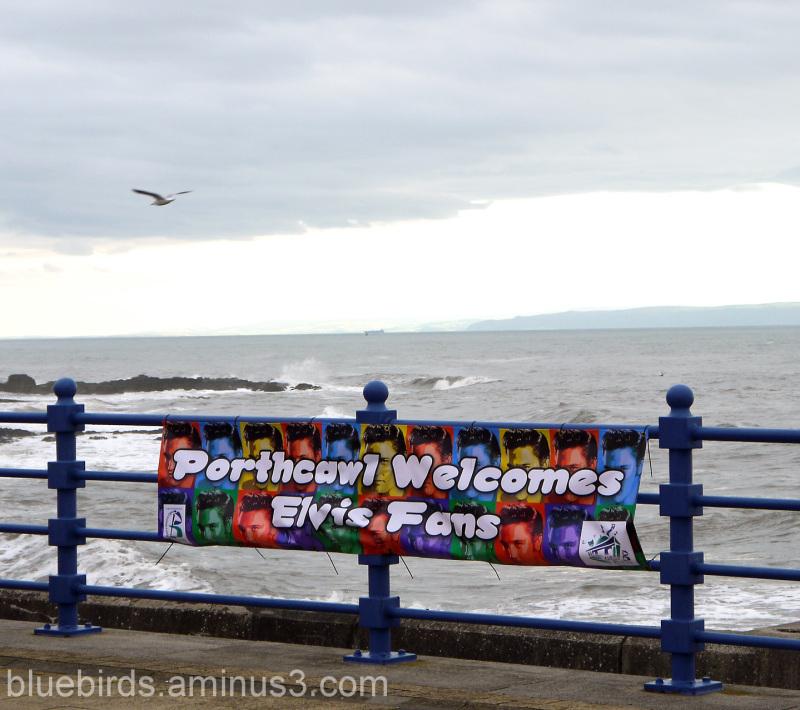 Elvis Weekend - Porthcawl 2011