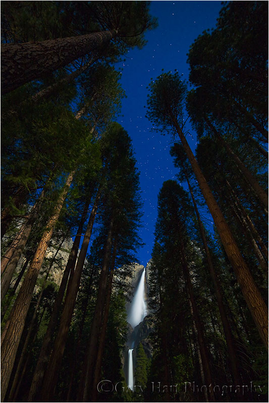 Moonlit Yosemite Falls and stars