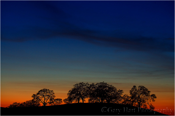 Oaks at Sunset, El Dorado Hills, California