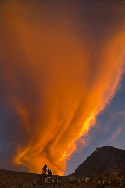Sierra wave lights up the sky near Bishop