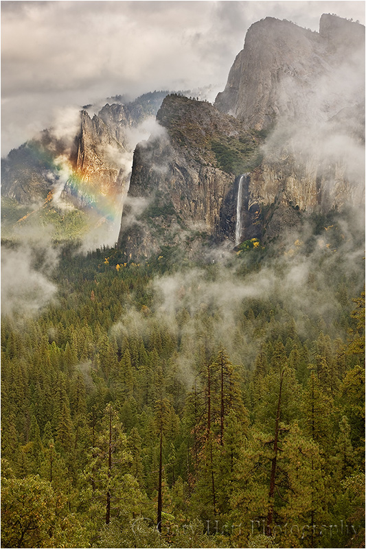 Clearing storm creates rainbow in Yosemite Valley.