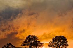 Setting sun sets clouds ablaze