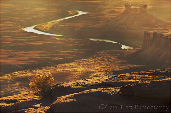 Green River at Sunset, Canyonlands NP, Utah