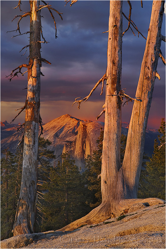 Sunset light bathes Sentinel Dome and Half Dome