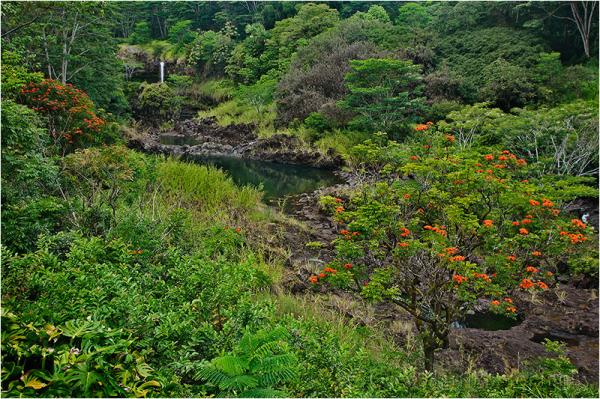 Pe'epe'e Fall nestled in a lush, tropical canyon