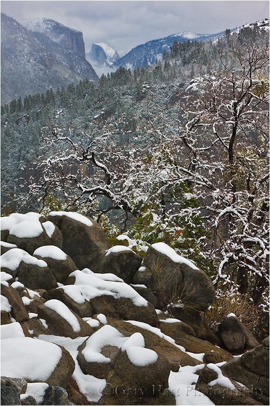 Fresh Snow, Half Dome View, Yosemite