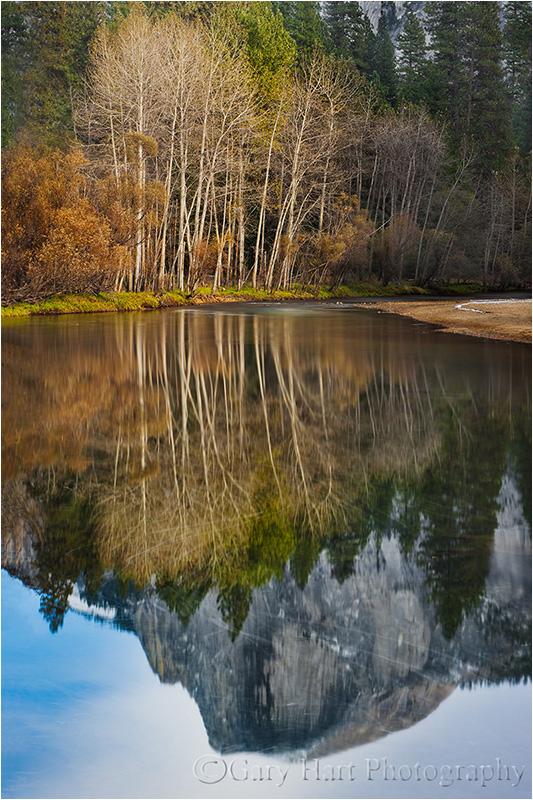 Reflection, Half Dome & the Merced River, Yosemite