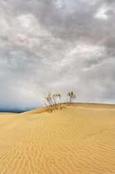 Storm Brewing, Mesquite Flat Dunes, Death Valley