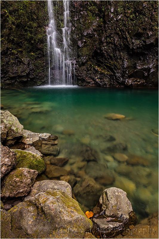 Waterfall and Pool, Road to Hana, Maui, Hawaii