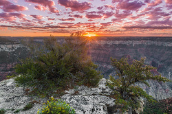 New Day, Bright Angel Point, Grand Canyon