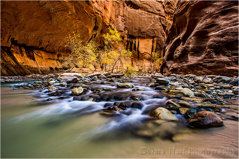 Rapids in Autumn, The Narrows, Zion National Park