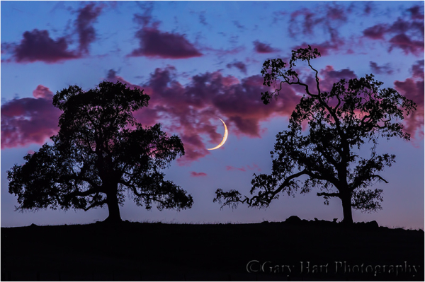Crescent Moon at Sunset, Sierra Foothills