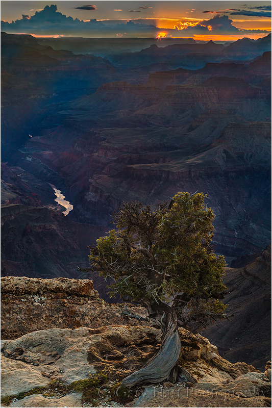 Solitude at Sunset, Lipan Point, Grand Canyon