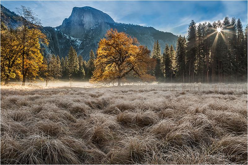 Autumn Glow, Cook's Meadow, Yosemite