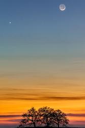 Heaven & Earth, New Moon & Venus, Sierra Foothills