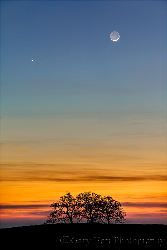 Heaven & Earth, New Moon & Venus, Sierra Foothills