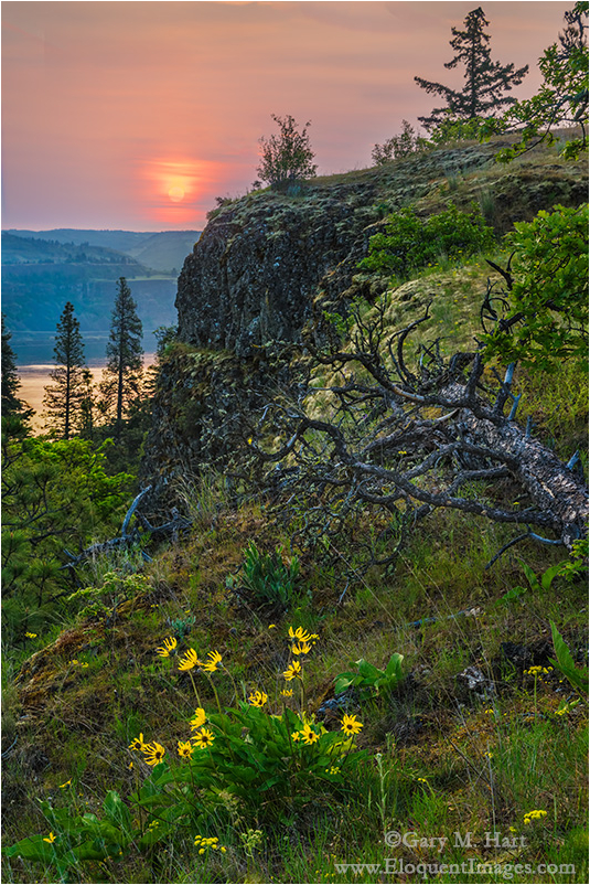 Spring Sunrise, Memaloose Overlook, Oregon
