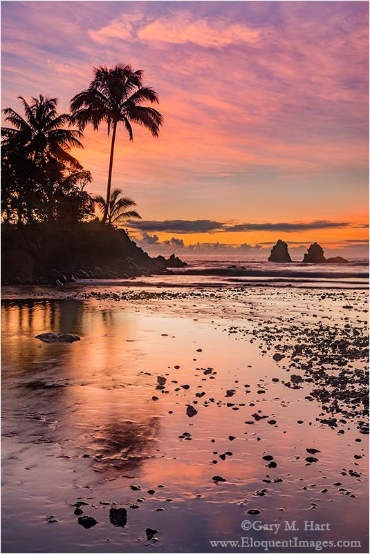 Tropical Sunrise, Hawaii Big Island