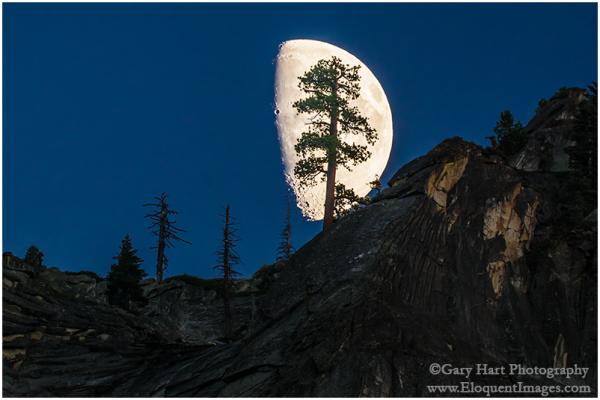 Big Moon, Valley View, Yosemite Valley