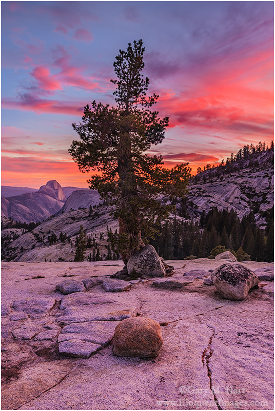 Sunset Fire, Olmsted Point, Yosemite
