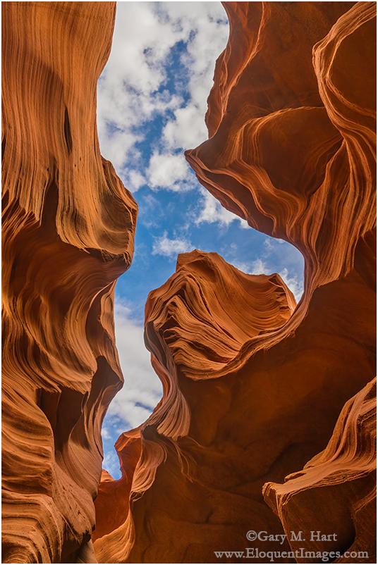 Looking Up, Lower Antelope Canyon, Arizona