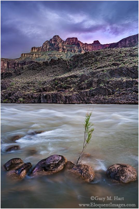 Nightfall, Colorado River, Grand Canyon