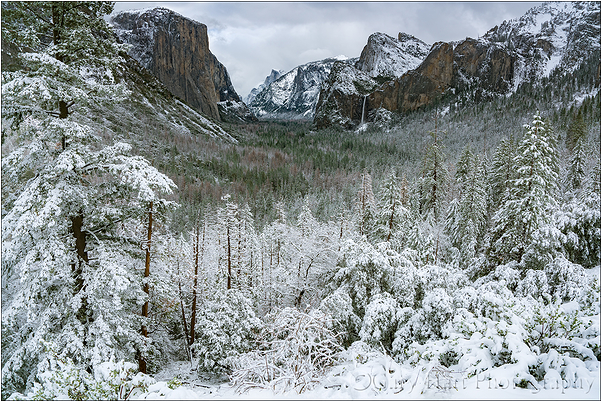 Snowfall, Tunnel View, Yosemite