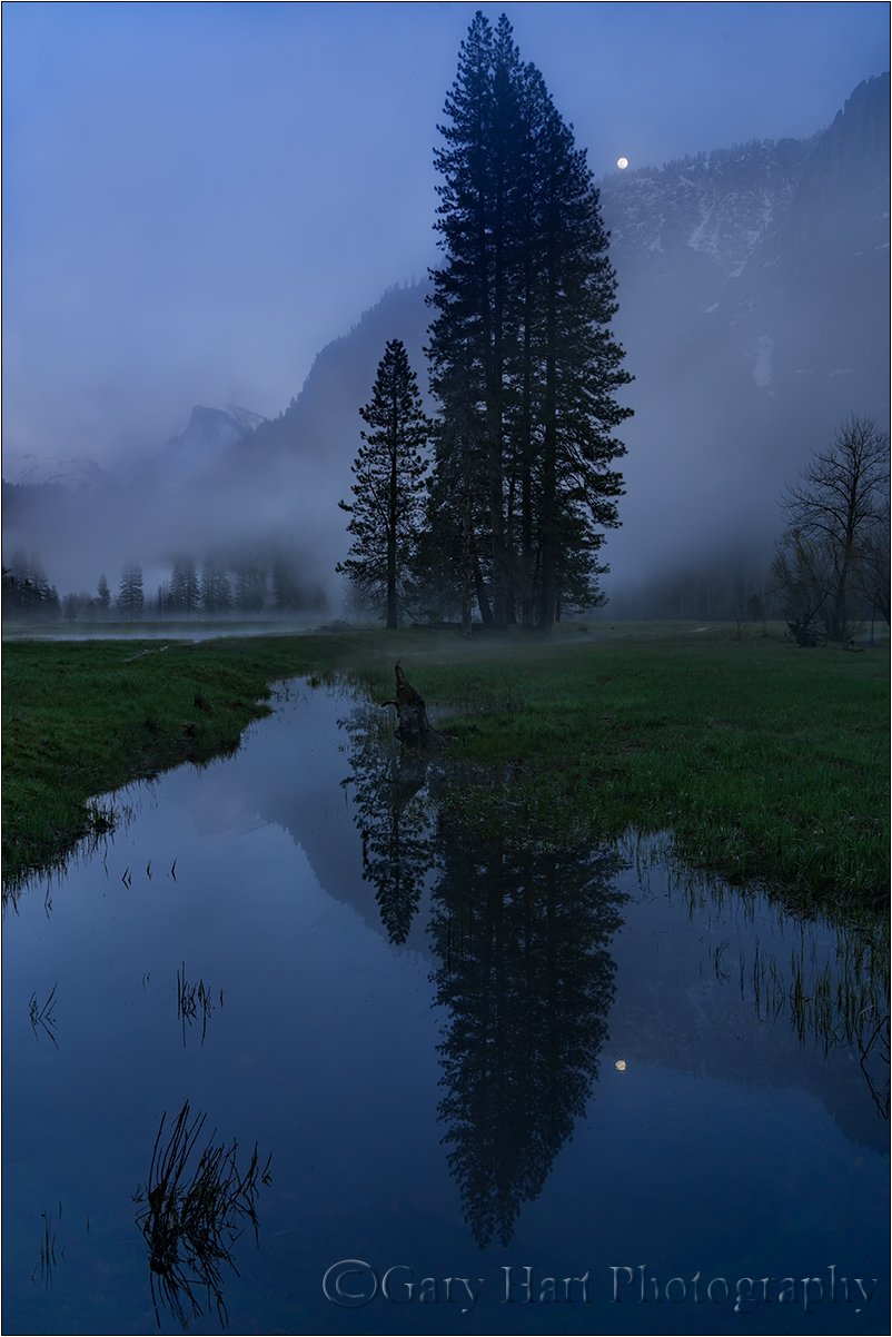 Moonrise Reflection, Leidig Meadow, Yosemite