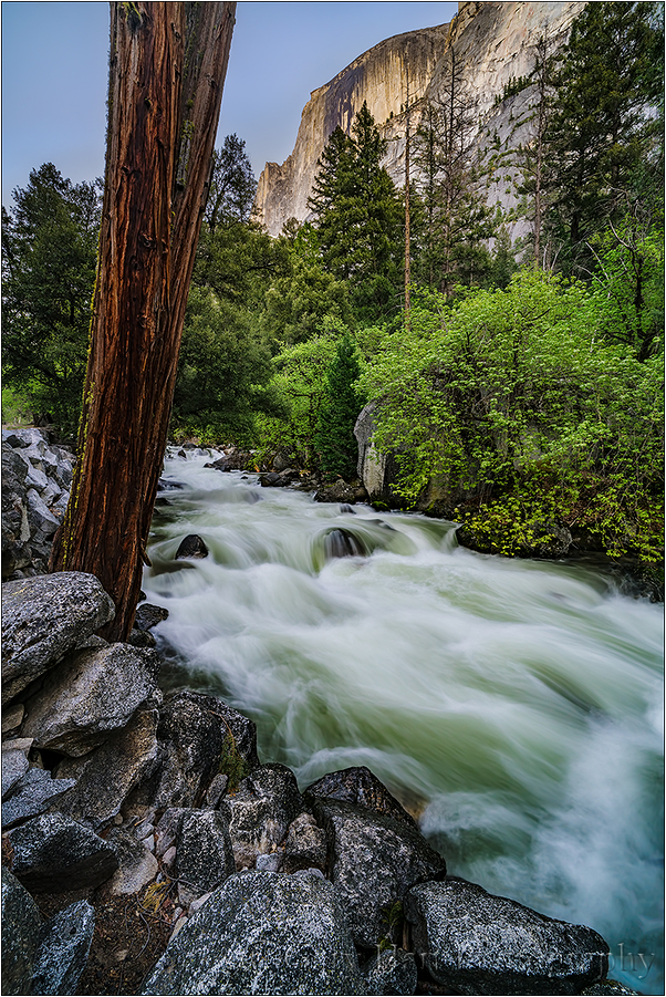 Rapids, Half Dome and Tenaya Creek, Yosemite