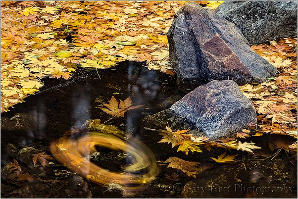 Autumn Spiral, Bridalveil Creek, Yosemite