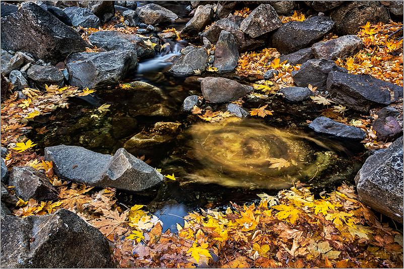 Color Wheel, Bridalveil Creek, Yosemite