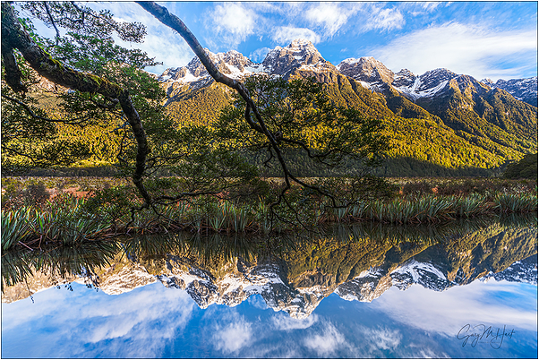 Reflection, Mirror Lakes, New Zealand