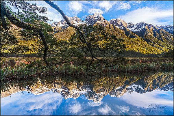 Reflection, Mirror Lakes, New Zealand