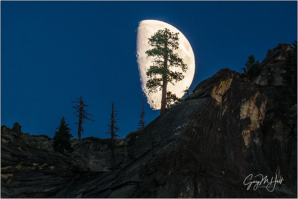 Big Moon, Valley View, Yosemite