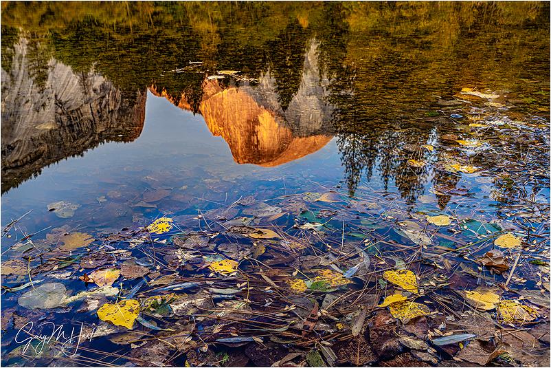 Autumn Accent, Half Dome, Yosemite
