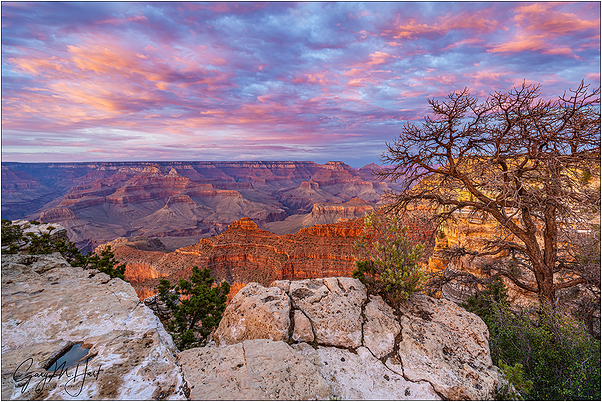 Painted Sunset, Mather Point, Grand Canyon