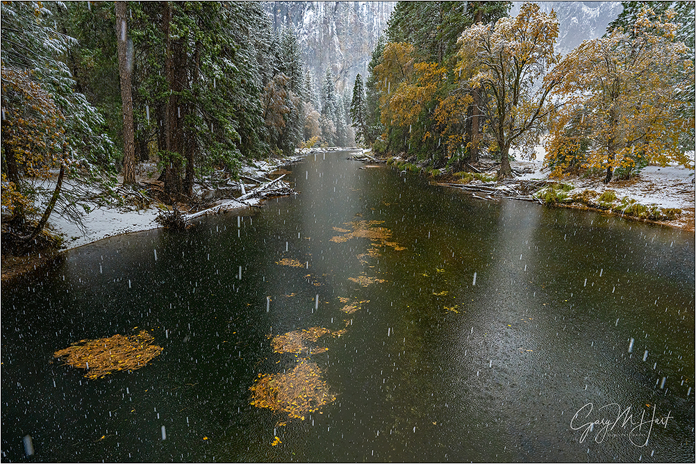 Falling Snow, Cathedral Rocks, Yosemite