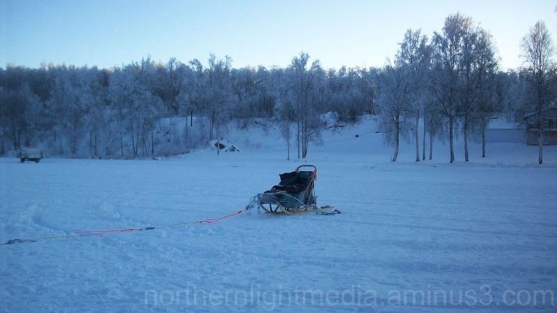 a lone dogsled at the end of the sled dog race