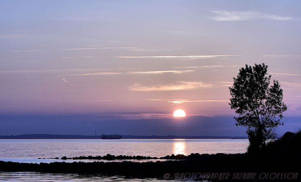 The evening's last light!~~~~Kvällens sista ljus!