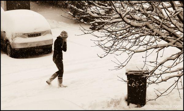 Stranger in the Snow!!!