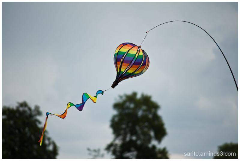 Basingstoke Kite Festival - 3
