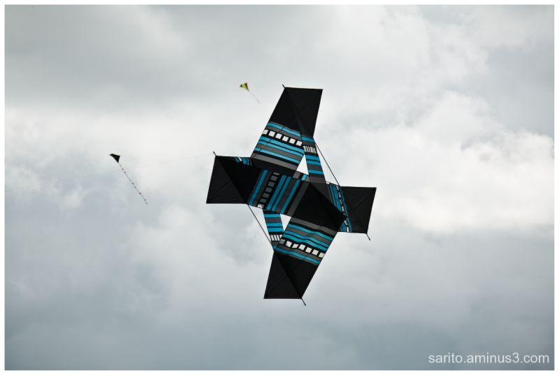 Basingstoke Kite Festival - 13