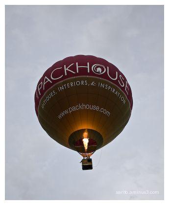 Balloons Over Basingstoke - 6