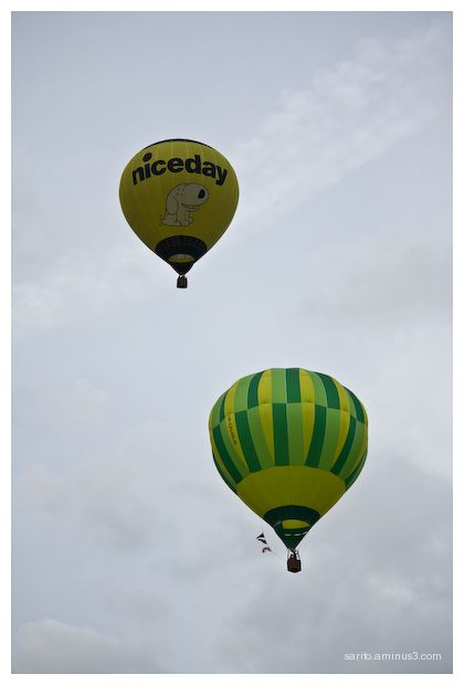 Balloons Over Basingstoke - 9