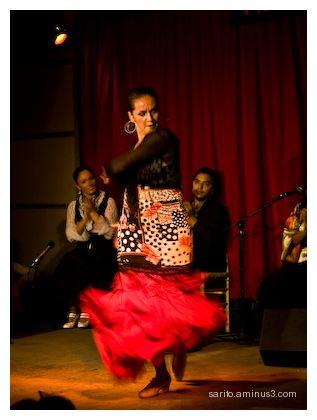 Flamenco (2)
