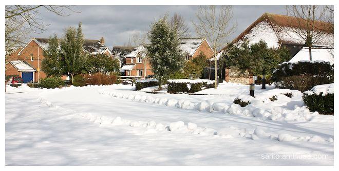 Winter (6)