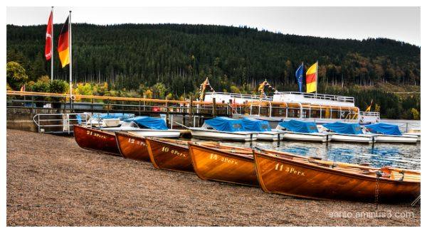 Lake Titisee (7)