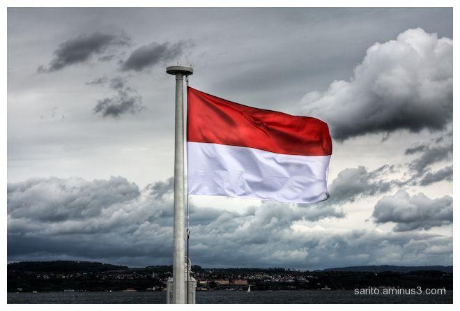 Austrian Flag...